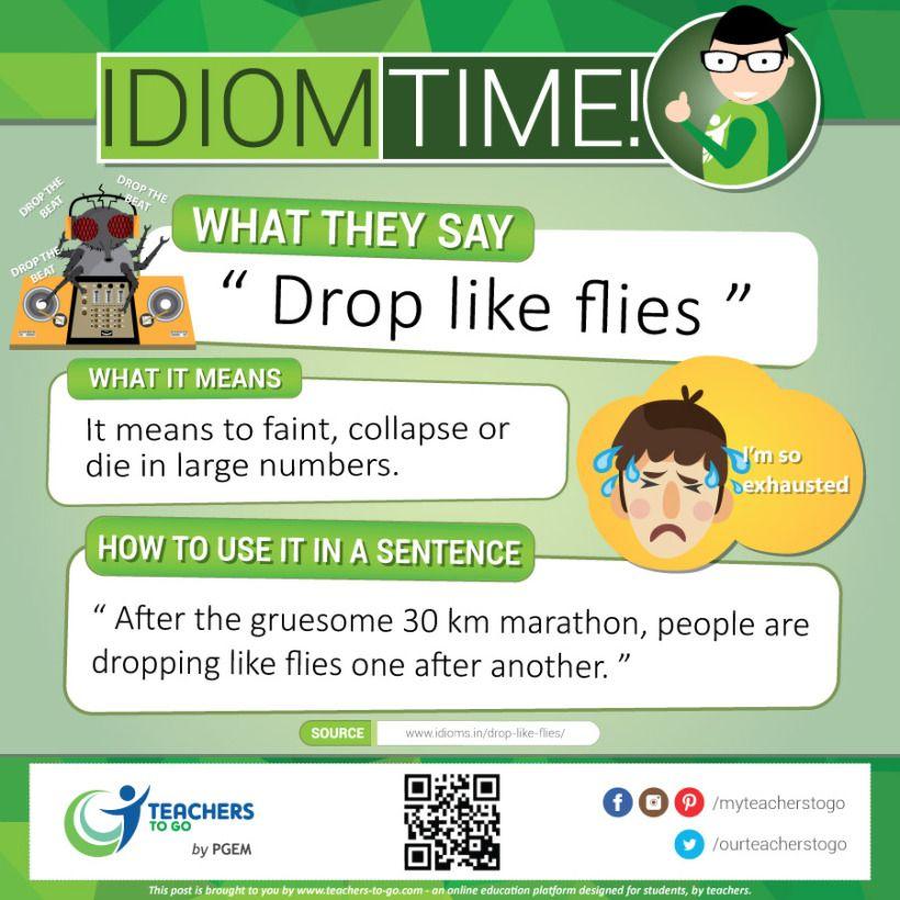 Idioms: Drop Like Fly | Idioms | Idioms, English idioms, Idioms, phrases