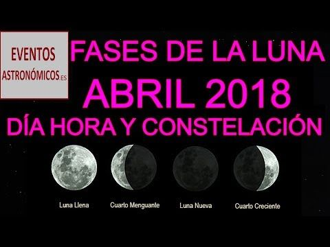 El Significado de Las Fases Lunares: Luna Nueva, Cuarto Creciente ...