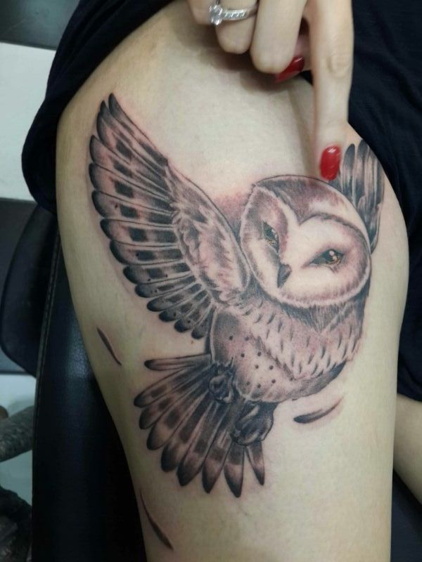 Owl tatoo 4 5 hours and a crap load of pain later i for Atomic tattoo lakeland fl