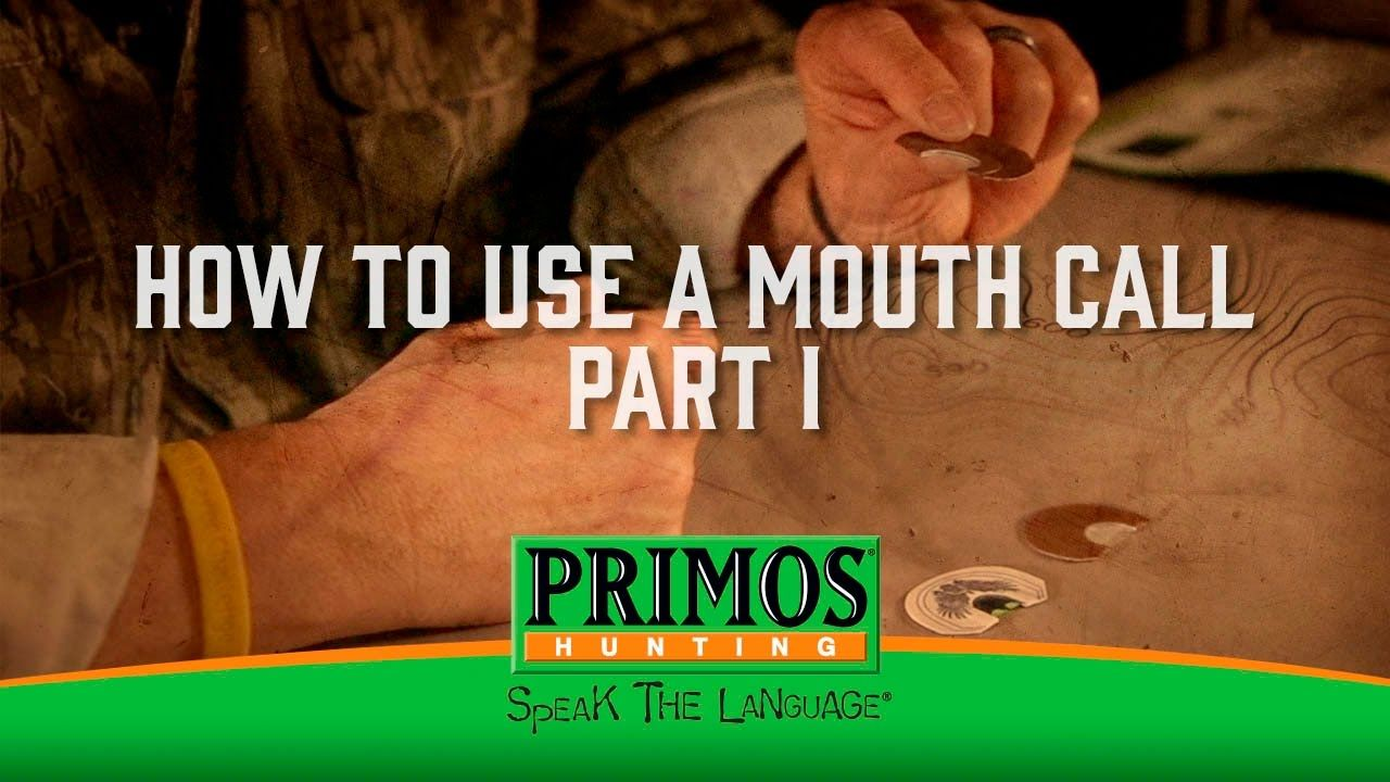 How to use a mouth turkey call part i turkey calling