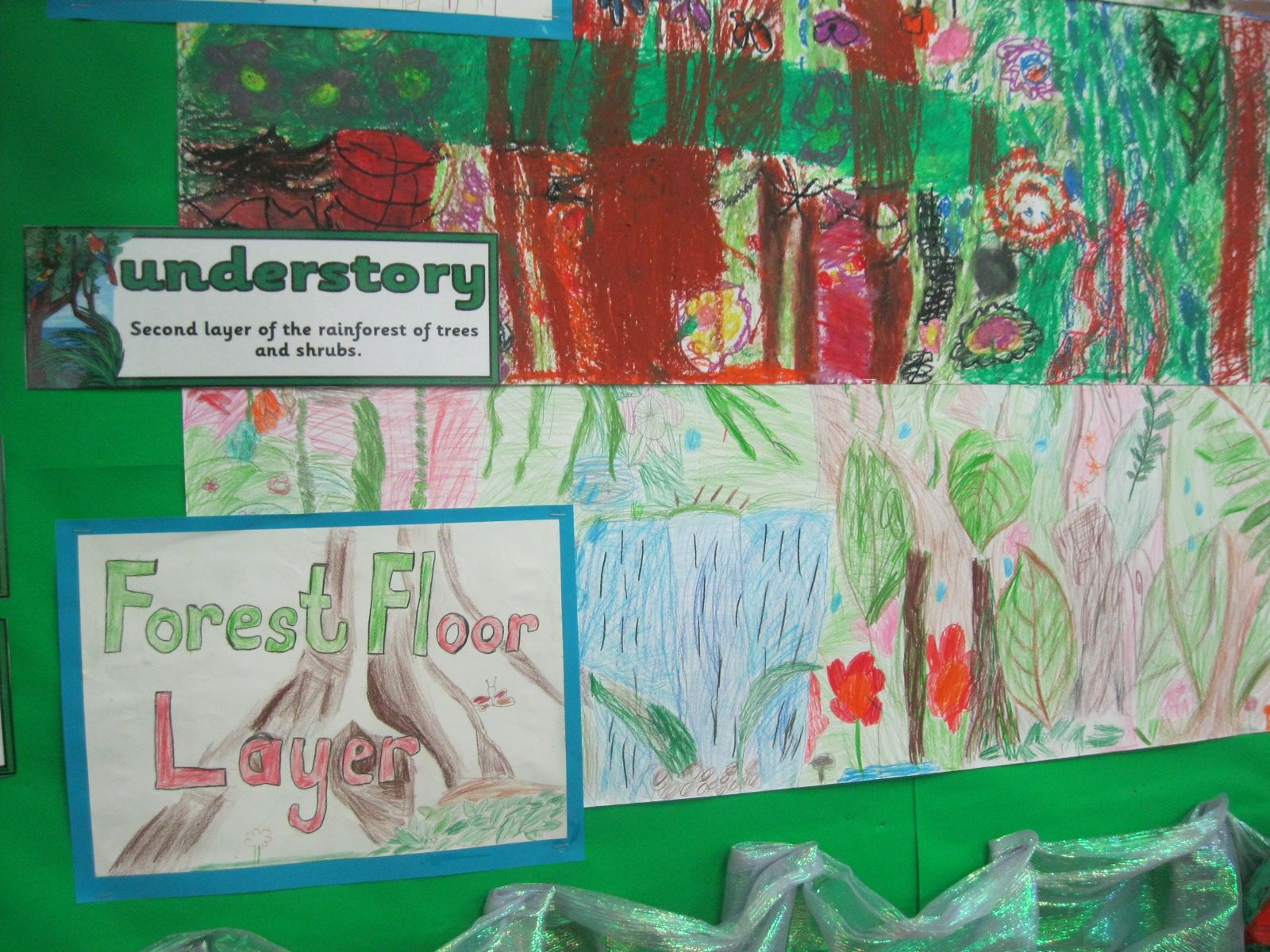 Year 3 Layers Of The Rainforest Ks2