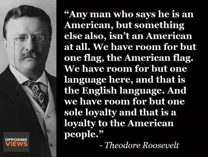 Teddy Roosevelt On What It Means To Be An American Teddy Roosevelt Quotes Roosevelt Quotes Historical Quotes