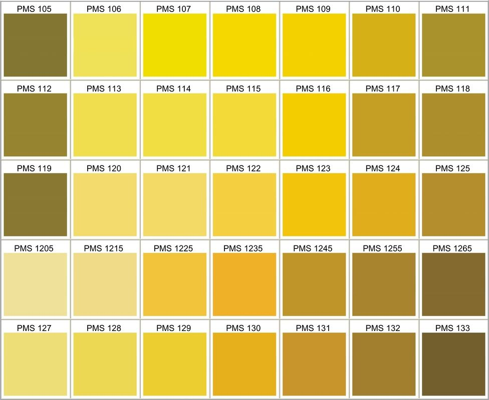 pms color chart choose your own silicone bracelets wrist band colors pantone palette yellow shades of 9c cool grey 6