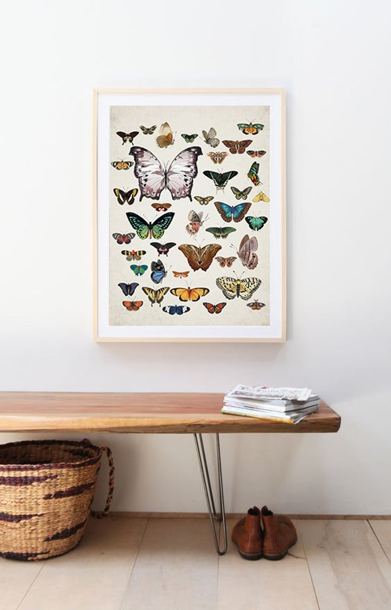 Custom Order Etsy In 2020 Butterfly Wall Art Animal Wall Decor Brown Wall Art