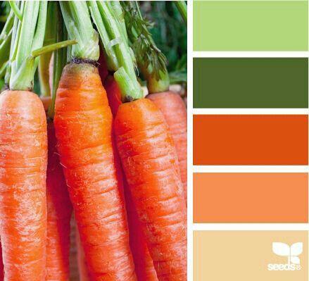 Color Zanahoria Rueda De Colores Armonia De Colores Paletas De Colores Ropa de mujer actual para el dia y la noche, lo ultimo de lo ultimo en moda femenina. color zanahoria rueda de colores