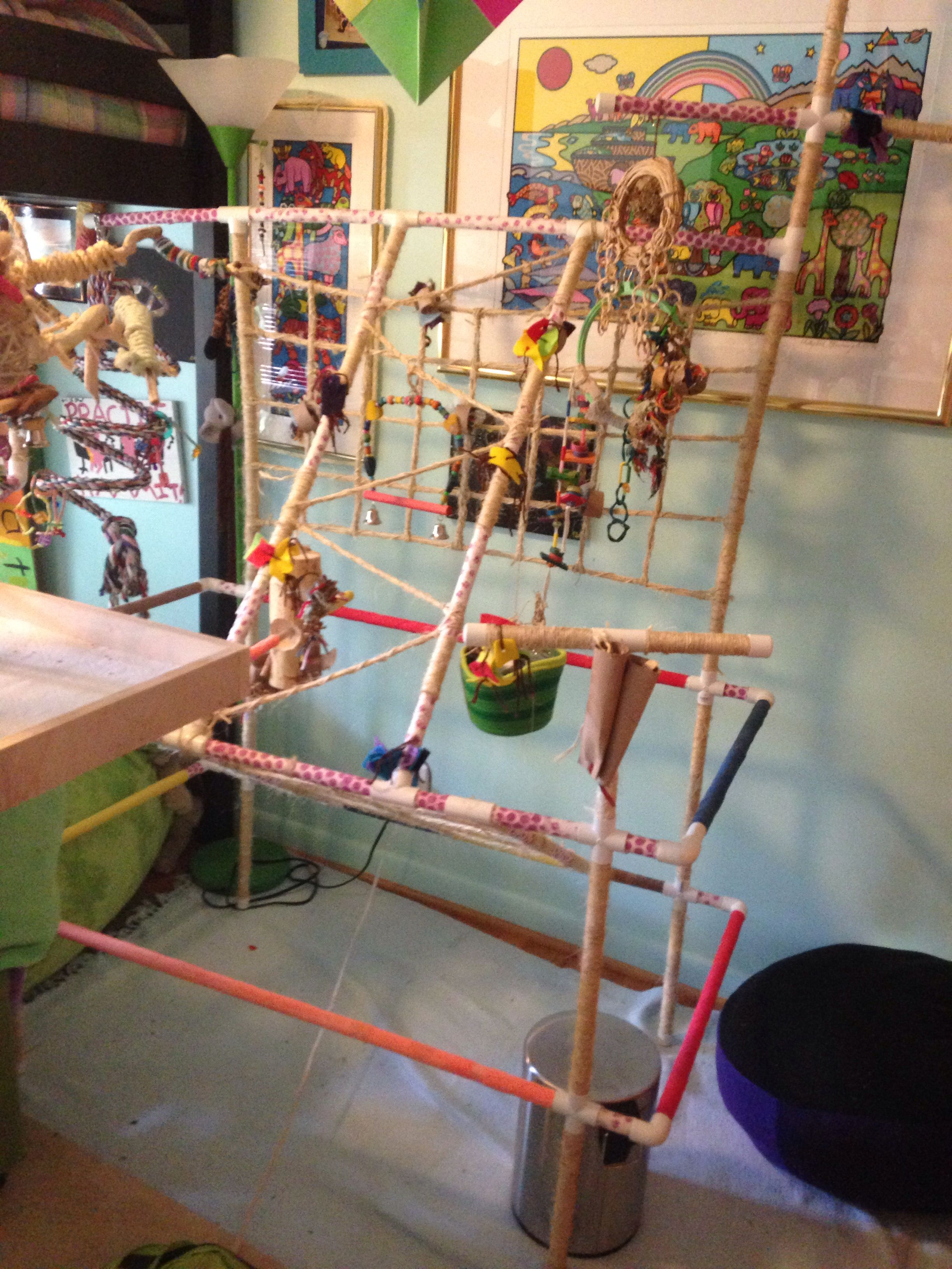 Pvc Conure Bird Play Gym Easy Weekend Diy Parrot Made