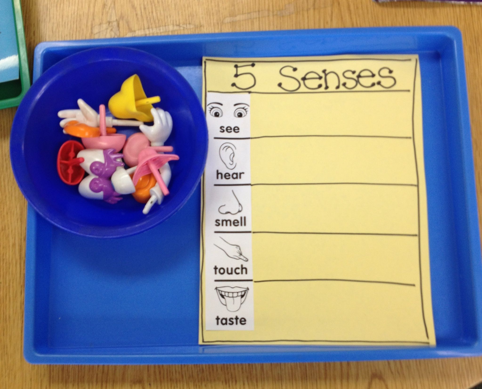 5 Senses Matching Game With Mr Potato Head Pieces