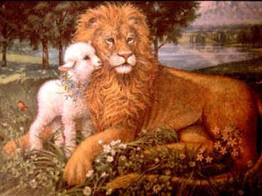Lion Lamb Photo This Was Uploaded By Find Other Pictures And Photos Or Upload Your Own With Photobucket Free Image