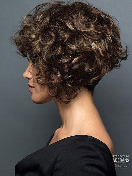 Cute Short Curly Hair Popular Short Curly Hairstyles 2018 2019 Curly Hair Styles Short Curly Hair Short Bob Hairstyles
