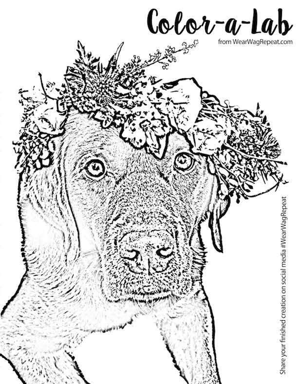 Free Printable: Lucy Flower Crown Coloring Page for Adults