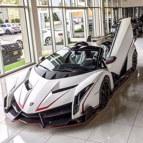 Lamborghini Veneno W Scissor Door Open Devices Tools