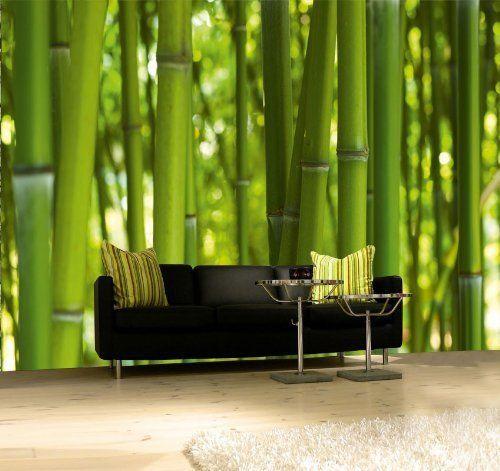 Fototapete Bambus Tapete Xxl Wandbild Kleistertapete Vliestapete Bamboo Wands Wald