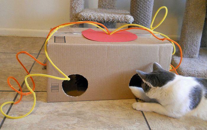 Katzen Spiele 1001