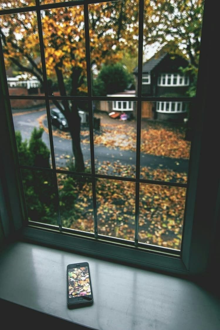 autumn ~ house ~ street ~ window ~ tree ~ orange ~ leaves ...