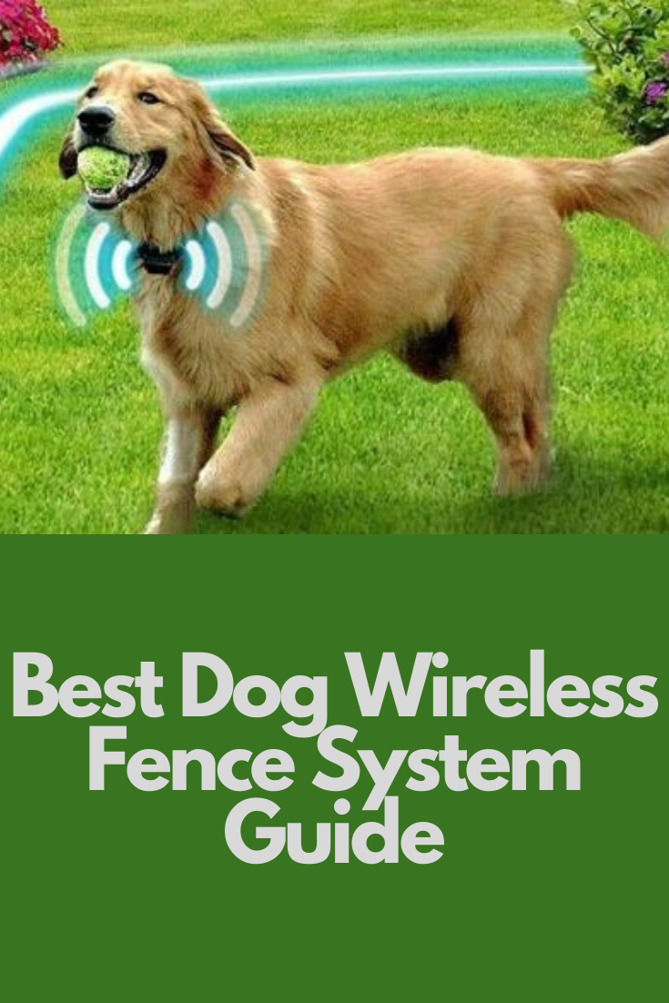 Invisible Dog Fence In 2020 Wireless Dog Fence Dog Fence Dogs