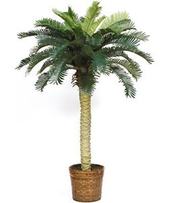 6 Ft Silk Palm Tree Indoor Potted Plants Tropical Home Decor Office Hawaiian Lg Fake Palm Tree Fake Plants Decor Sago Palm Tree