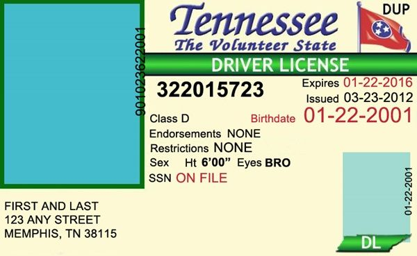 fake driving licence template - tennessee drivers license editable psd template download