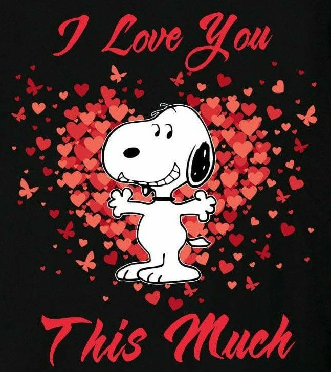 SNOOPY~I LOVE YOU THIS MUCH
