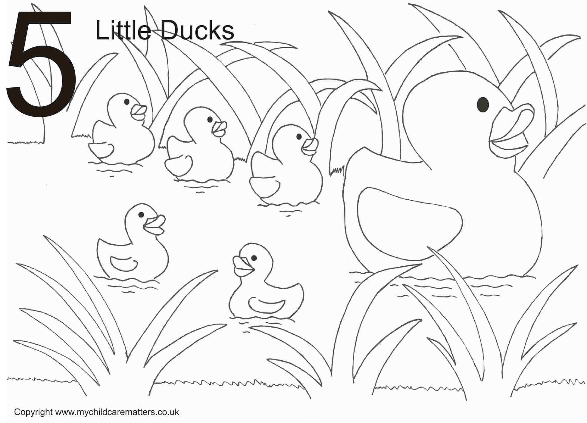 5 Little Ducks Colouring Pages Coloring Pages Little Duck Bird Coloring Pages In 2021 Unicorn Coloring Pages Coloring Pages Bird Coloring Pages