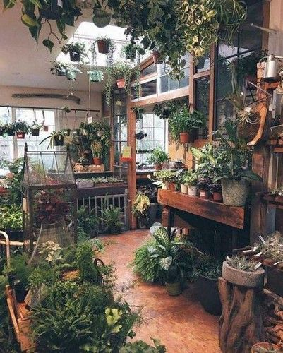 Patio With Skylight And Endless Plants Via Reddit Room With Plants Garden Room Garden Shop