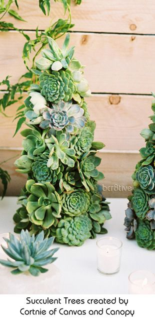Succulent Christmas Trees (and instructions for DIY) & Succulent Christmas Trees (and instructions for DIY) | Xmas tree ...