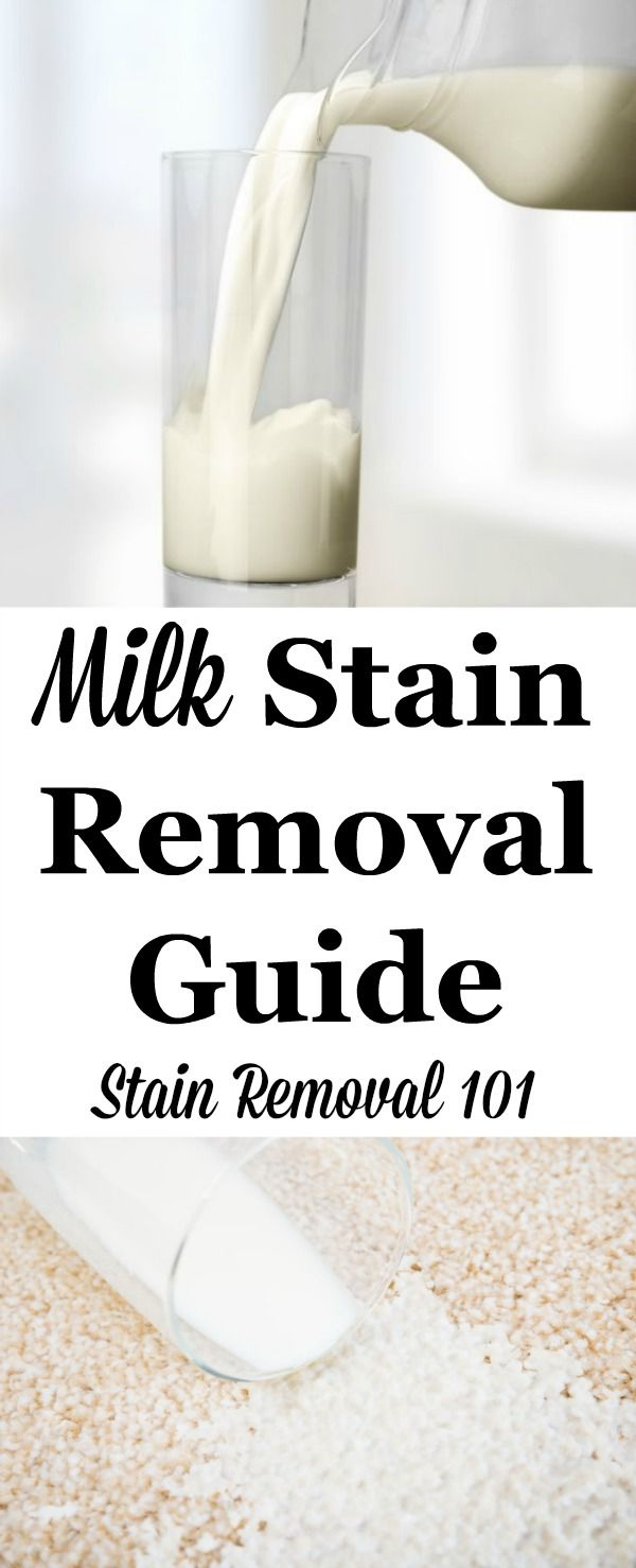 How To Remove Milk Stains Carpet Stains Stain Remover