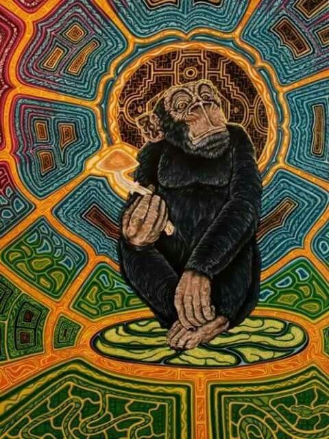 Monkey psicodelico