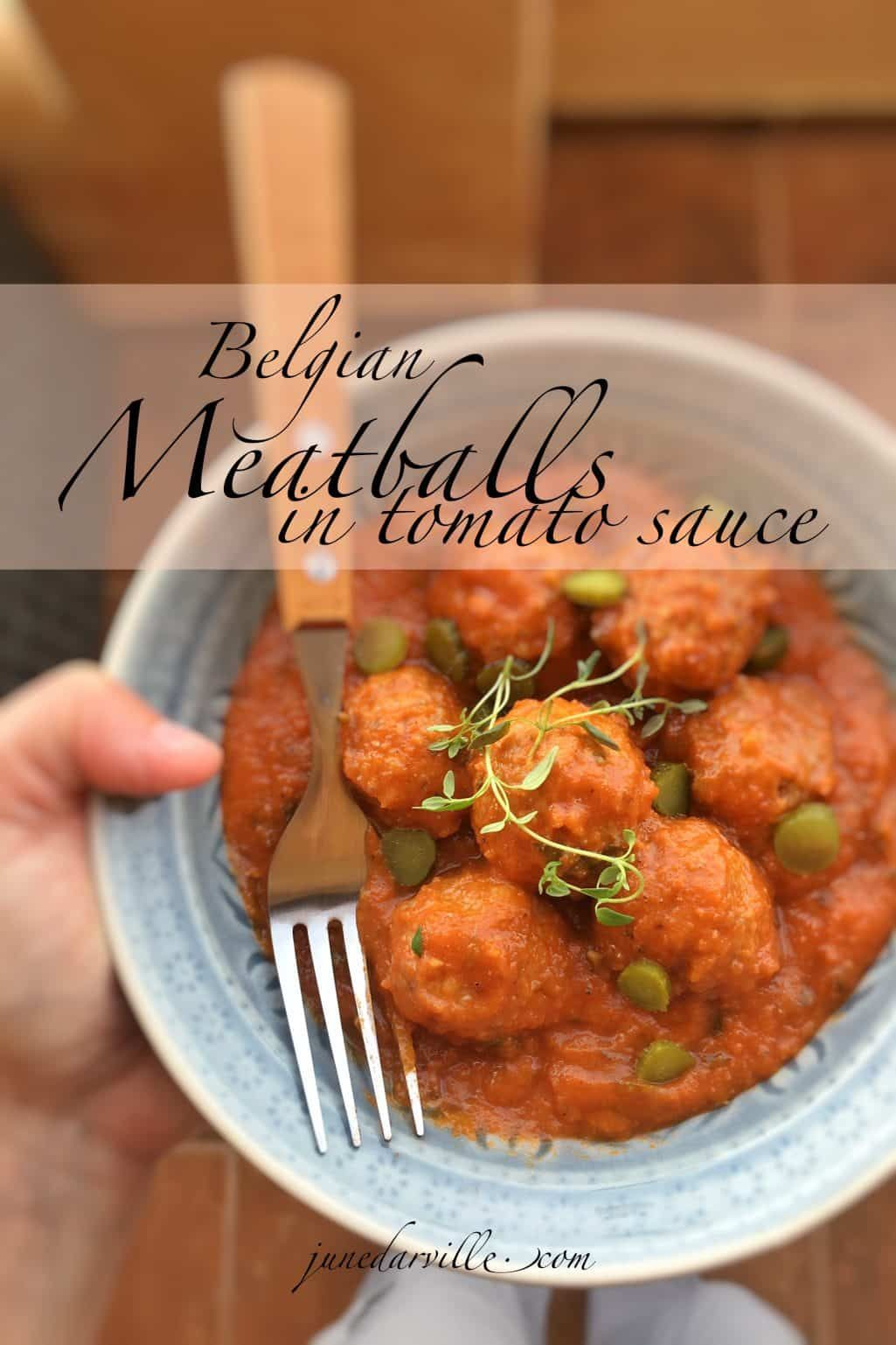 My delicious meatballs in tomato sauce recipe a classic belgian my delicious meatballs in tomato sauce recipe a classic belgian dish prepared my style forumfinder Choice Image
