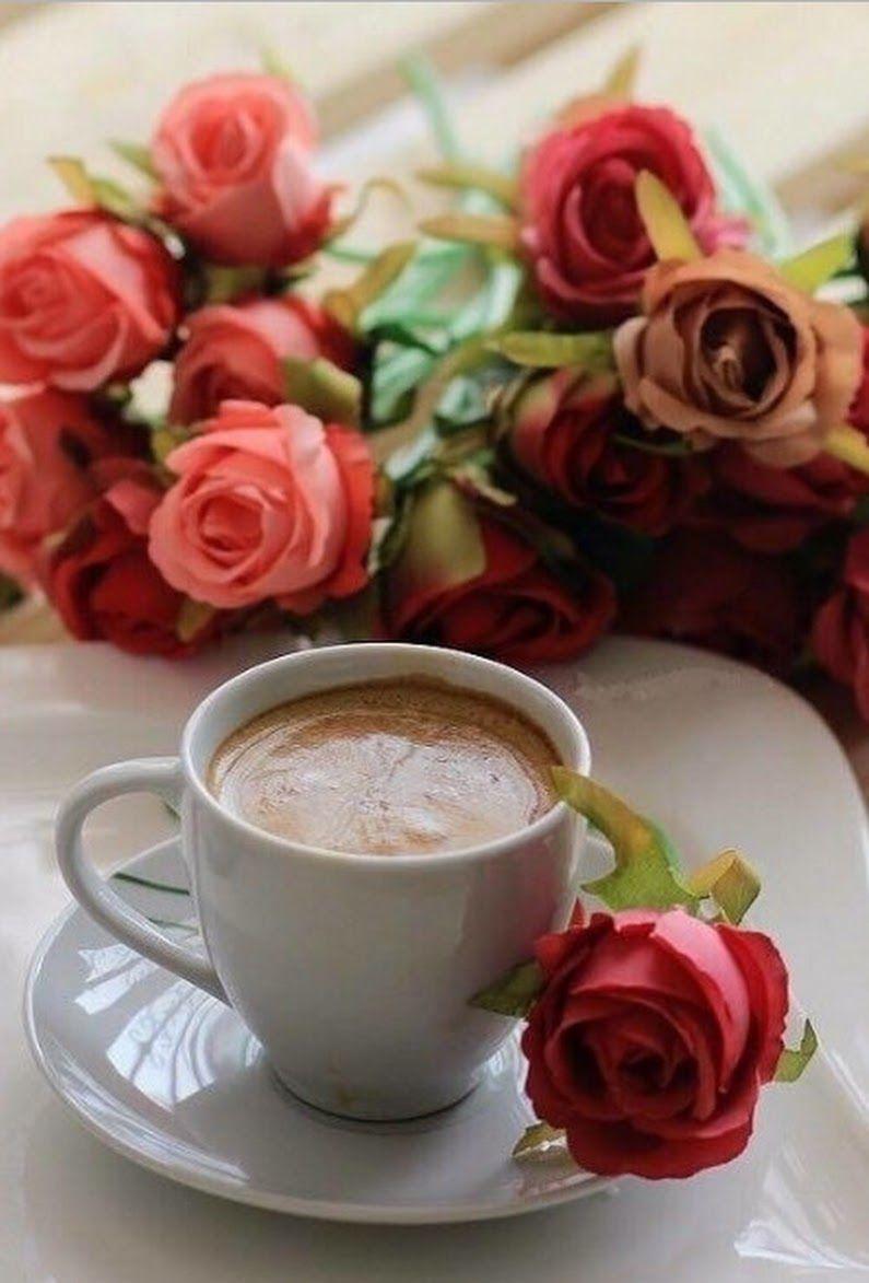 احلي فنجان قهوه ده ولا ايه طبعاااااااا Good Morning Coffee Coffee Valentines Coffee Time