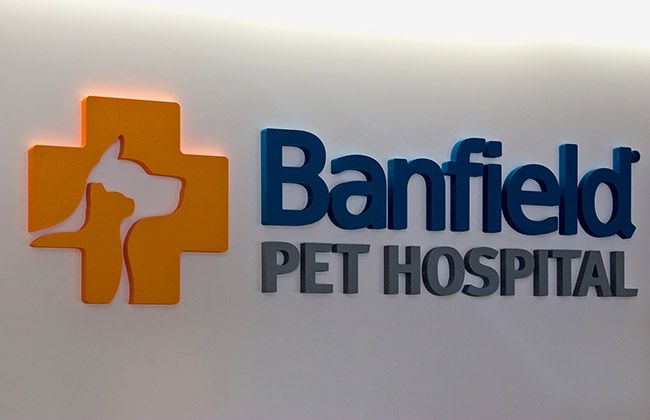 Krs King Retail Solutions Portfolio Banfield Pet Hospitals Animal Hospital Retail Solutions Pets