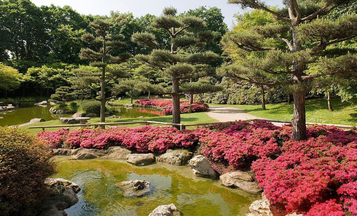 Japanischer Garten Dusseldorf Eintritt Auf Einem Budget Von Japanischer Garten Landeshauptstadt Dusseldorf In Bezug Auf Japanischer Garden Golf Courses Field