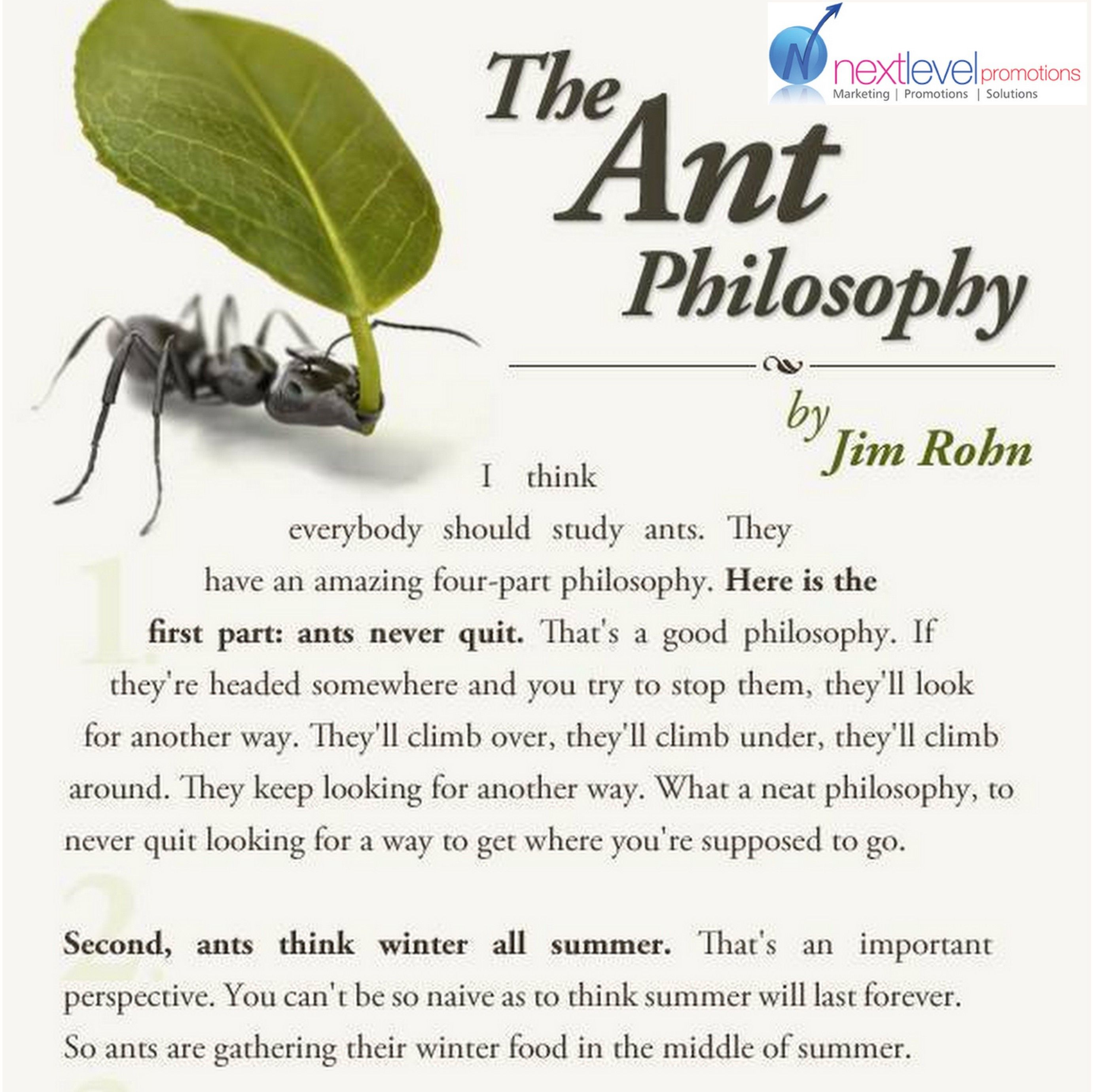 Ants-Teachers of Courage, patience, hard work and self ...
