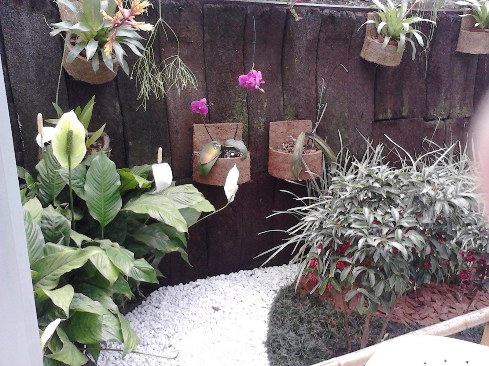 Jardim inverno, estilo tropical