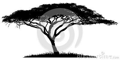 Silhouette Of The Tree Acacia African Tree Tree Of Life Tattoo Bonsai Tree Tattoos