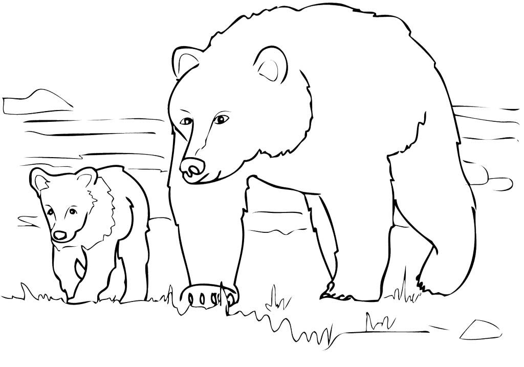 Grizzly Bear Family Coloring Pages