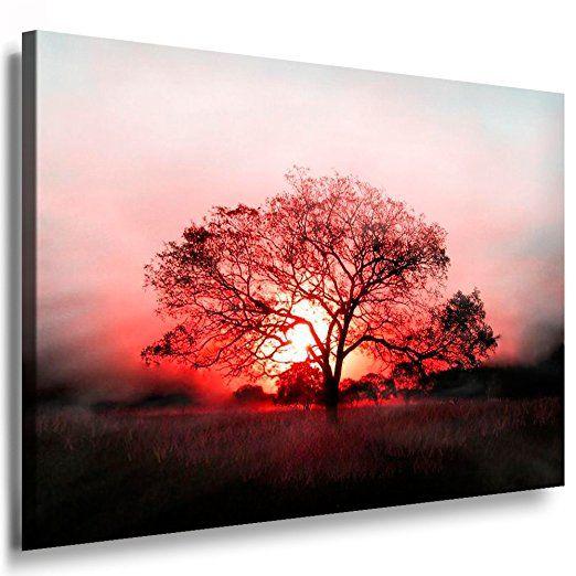 Bilder Kunstdrucke / Boikal / Leinwandbild, Bild mit Keilrahmen