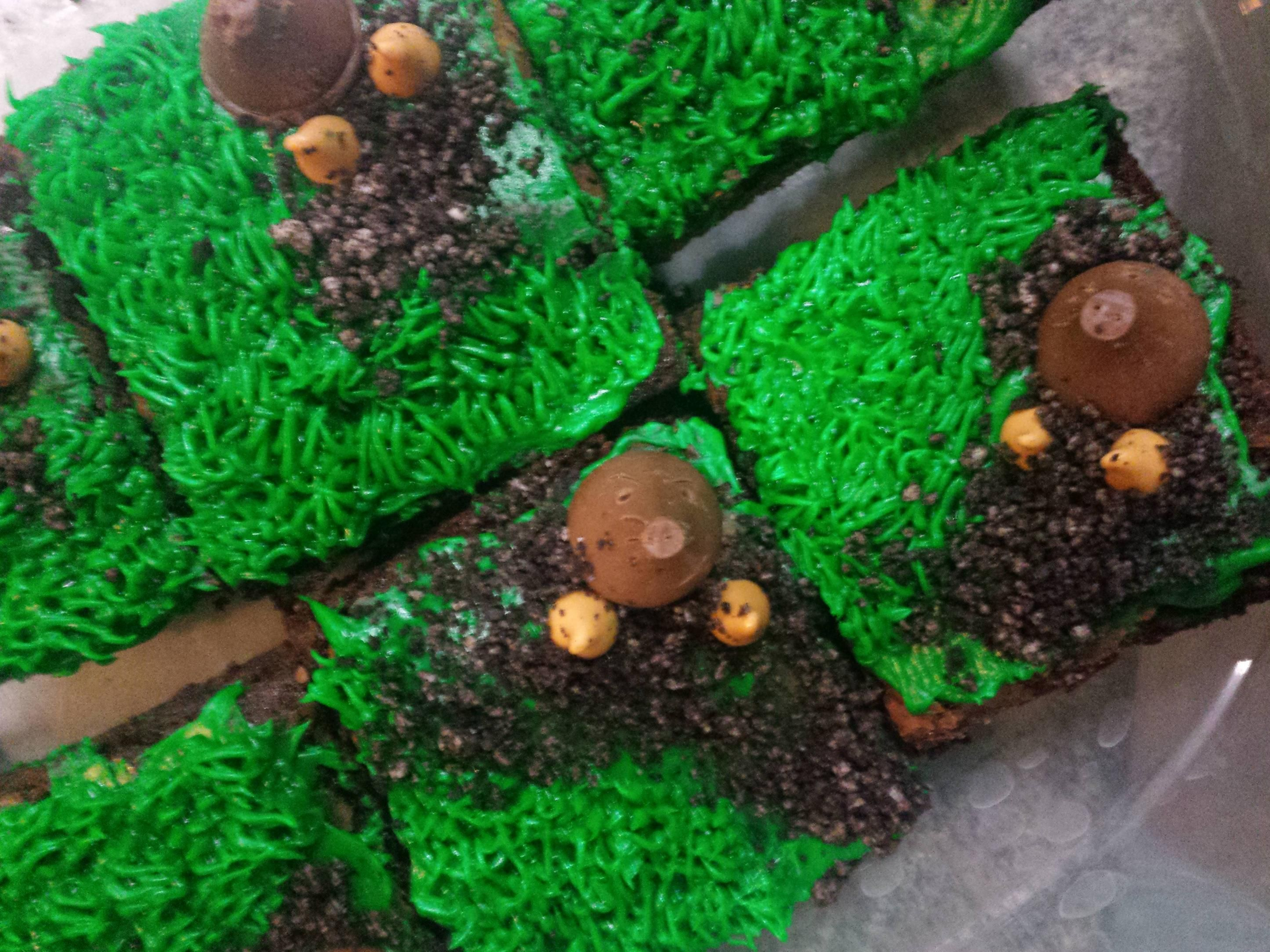 Mole Brownies For Son S Science Class With Images Mole Day