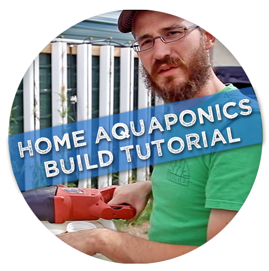 Pin by aquaponics jacky on aquaponics theory | Pinterest ...