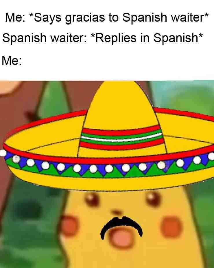 37 Memes You Ll Understand Only If You Have Super Sense Of Humor Pikachu Memes Stupid Funny Memes Funny Memes