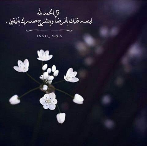 قل الحمد لله Islam Favorite Words Qoutes