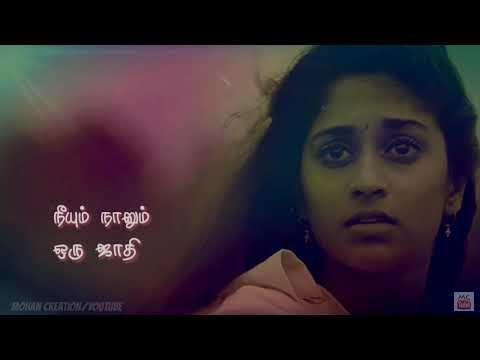 Watch or Download Whatsapp status video tamil,, evano ...