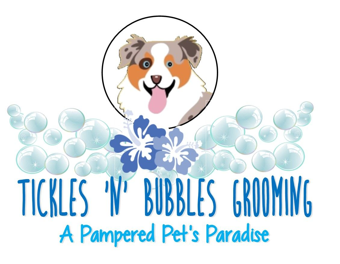 Logo Idea That I Made For My Mobile Grooming Buisness Pet Paradise Tickled Pets