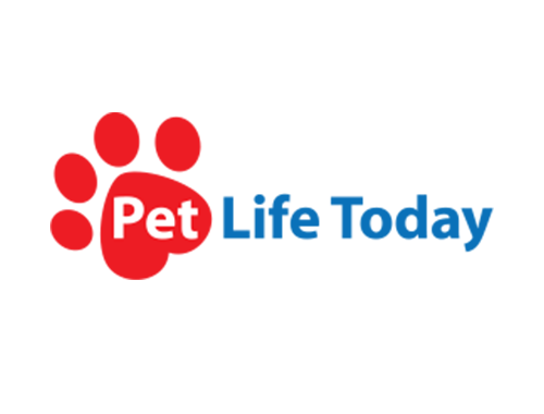 The 5 Best Affordable Pet Insurance Plans Of 2020 In 2020 Embrace Pet Insurance Pet Insurance Reviews Pet Life