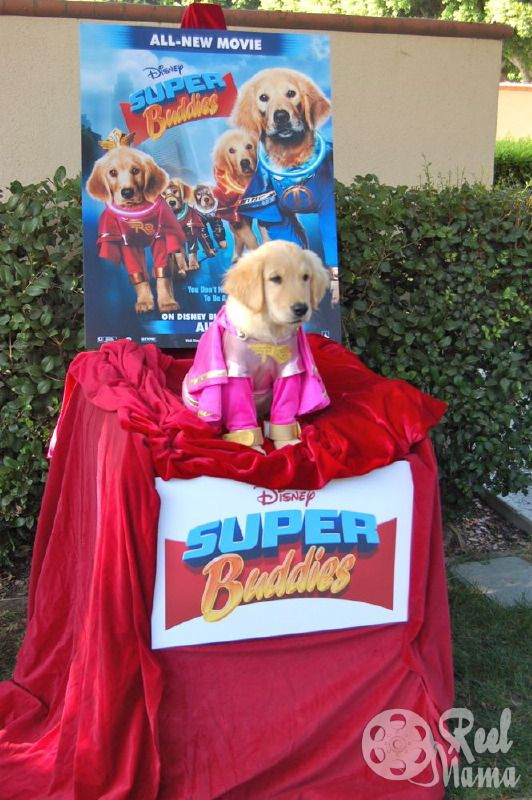 Meet The Disney Super Buddies Review And Rosebud Interview