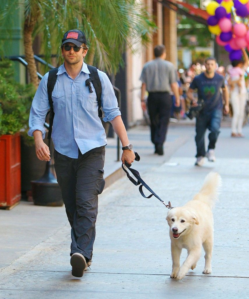 Bradley Cooper Loves His Rescue Dog 3 Bradley Cooper Bradley