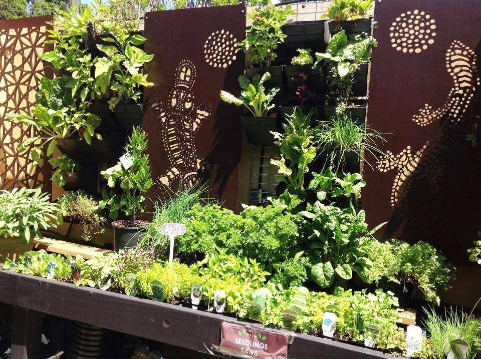 Garden Screen Designs At Paps Vertical Garden Centre With QAQ U0027Playpusu0027 And  U0027Lizard