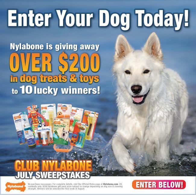 Win $200 worth of @Nylabone Products