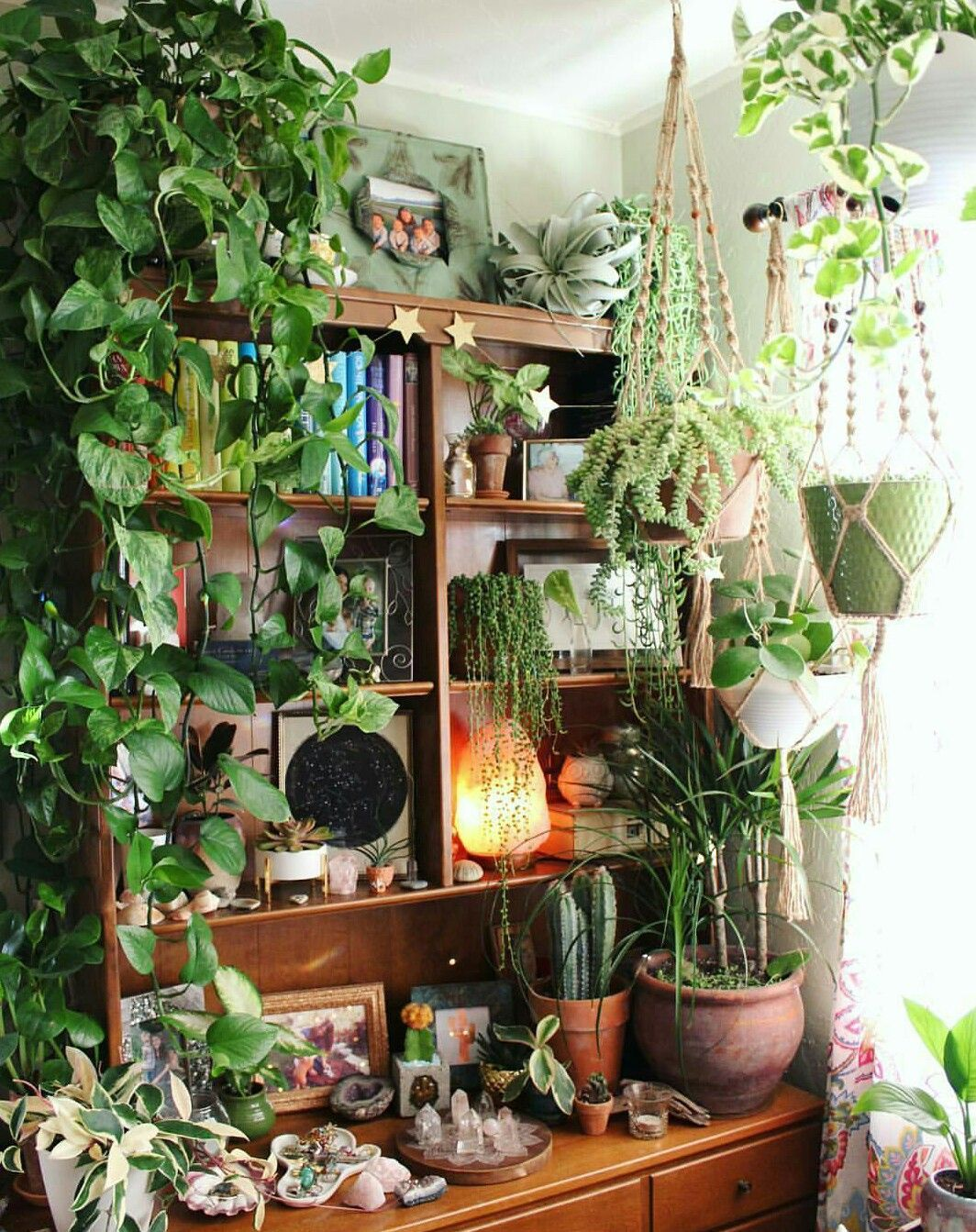 Hängepflanzen Zimmer More Plants Please Boho Home Decor Living With Plants