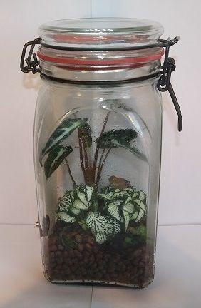 hermetosph ren eine welt im glas stoffkreisl ufe im wohnzimmer hermetosph re pflanzen. Black Bedroom Furniture Sets. Home Design Ideas
