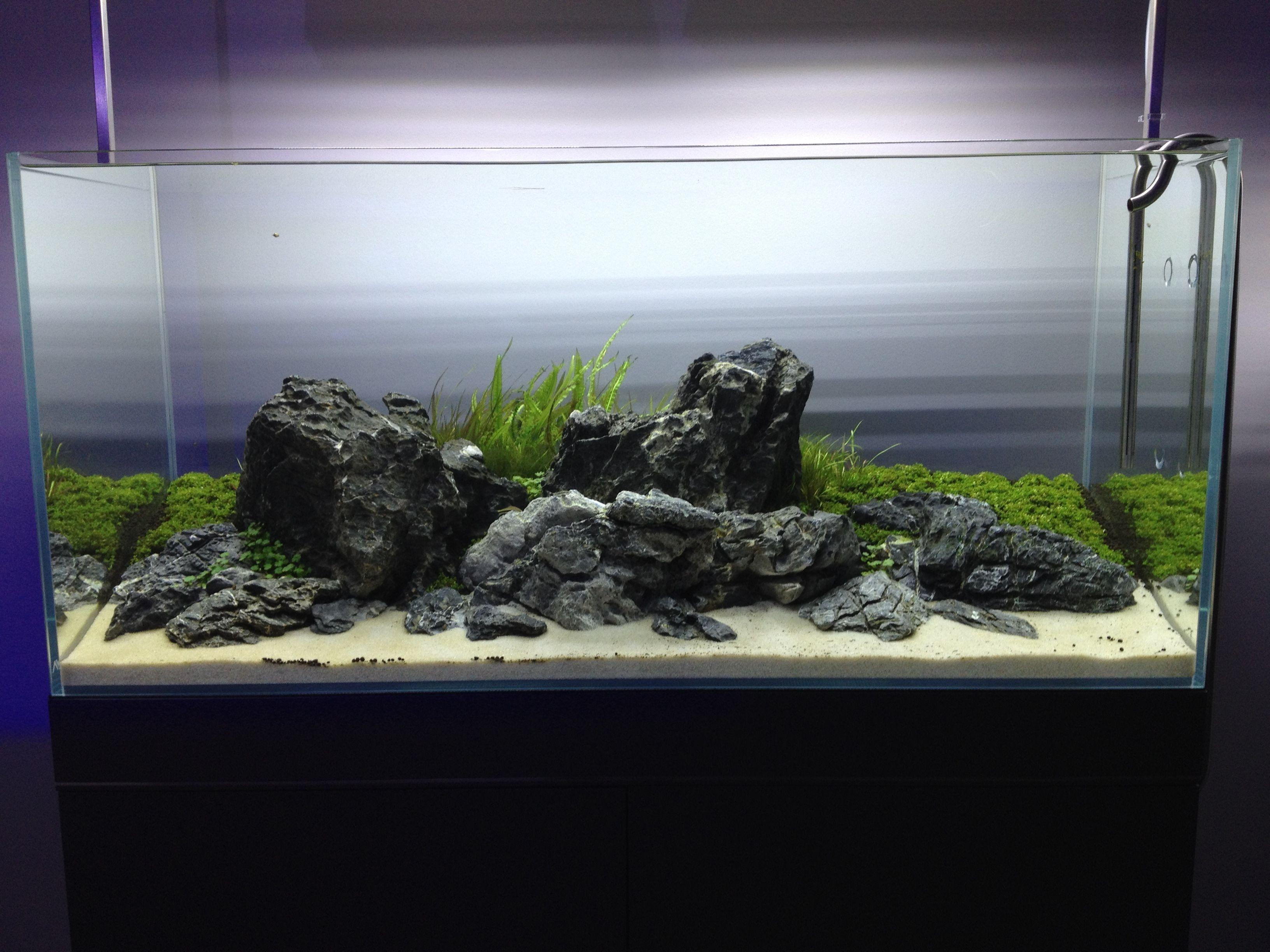 Turtle Tank Decoration Ideas Best Of Aquarium Design Group Tanks
